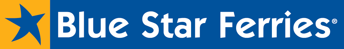 blue_star_logo_sketo_newcolor_nofileto copy